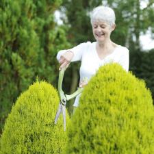 Възрастна дама подкастря храст.