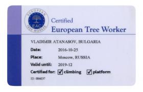 Arborist services certificate (image)